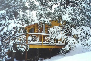 Deer Creek Cabin Winter View 1